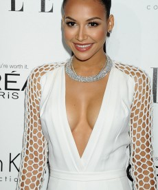 Naya Rivera Looks Absolutely Stunning