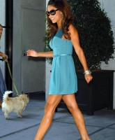 Vanessa Minnillo in blue