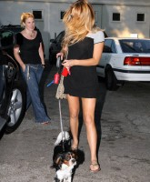 Amanda Bynes walks her pet