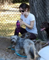 Rachel Bilson walks her dog