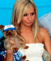 Ashley Tisdale 17.jpg