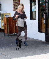Pamela Anderson and Dogs