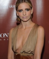 Sarah Michelle Gellar goes South