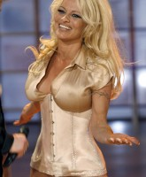 Pamela Anderson at her Sexy Best