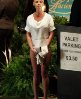 Katherine Heigl shows her Panties